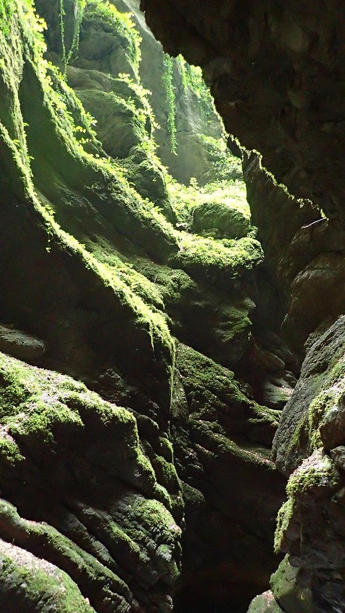 canyoning Grenoble et Lyon : canyon de l'Infernet